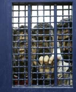نادي الأسير: توافق بين الأسرى في سجون الاحتلال على برنامج نضالي تدريجي