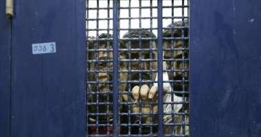 هيئة الأسرى : تُوثق شهادات مروعة لثلاثة معتقلين