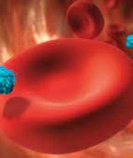 اختبار دم بسيط يكشف 50 نوعا من السرطان