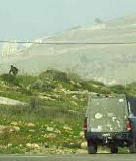 نابلس: إصابة 5 مواطنين بالرصاص المطاطي  خلال اقتحام المستوطنين لمقام النبي يوسف